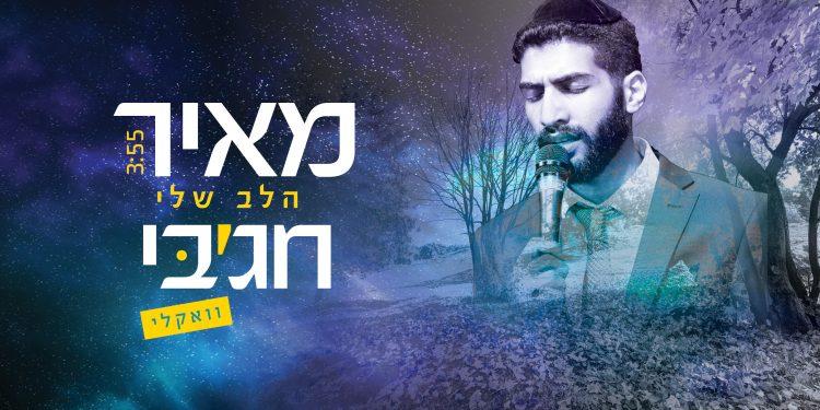 Meir Chajabi - Halev Sheli Acapella