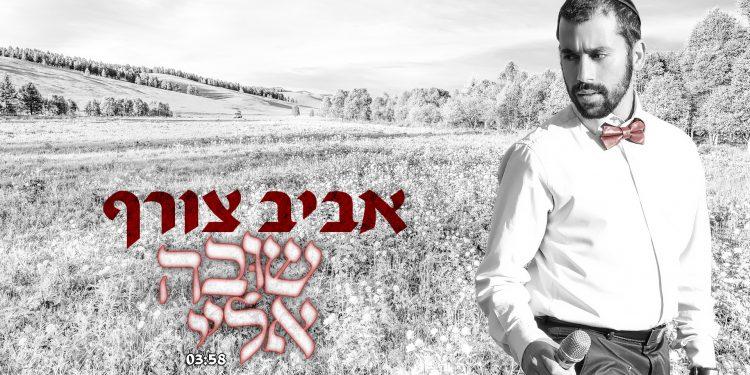 Aviv Tzoref - Shuva Eilay