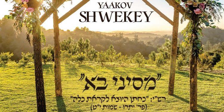 Yaakov Shwekey - M'Sinai Ba