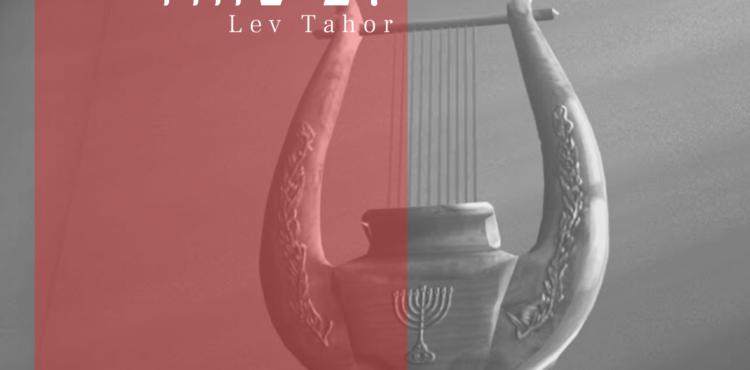Shlomo Katz - Lev Tahor