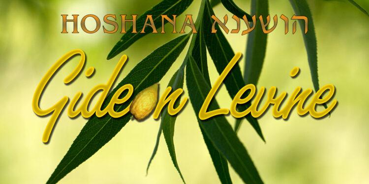 Gideon Levine - Hoshana